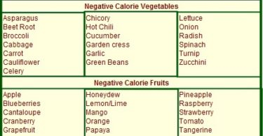 zero calorie foods list, negative calorie foods list, zero calorie foods list pdf, complete list of negative calorie foods, list of negative calorie foods pdf, negative calorie foods list pdf, negative calorie diet food list, zero calorie foods list menu, full list of negative calorie foods, what are negative calorie foods list, list of all negative calorie foods, list of negative calorie foods 2016, list of negative calorie foods for weight loss, negative calorie food list india,